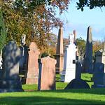 Ayr Cemetery 4